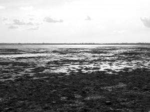 Portchester Lake at low tide